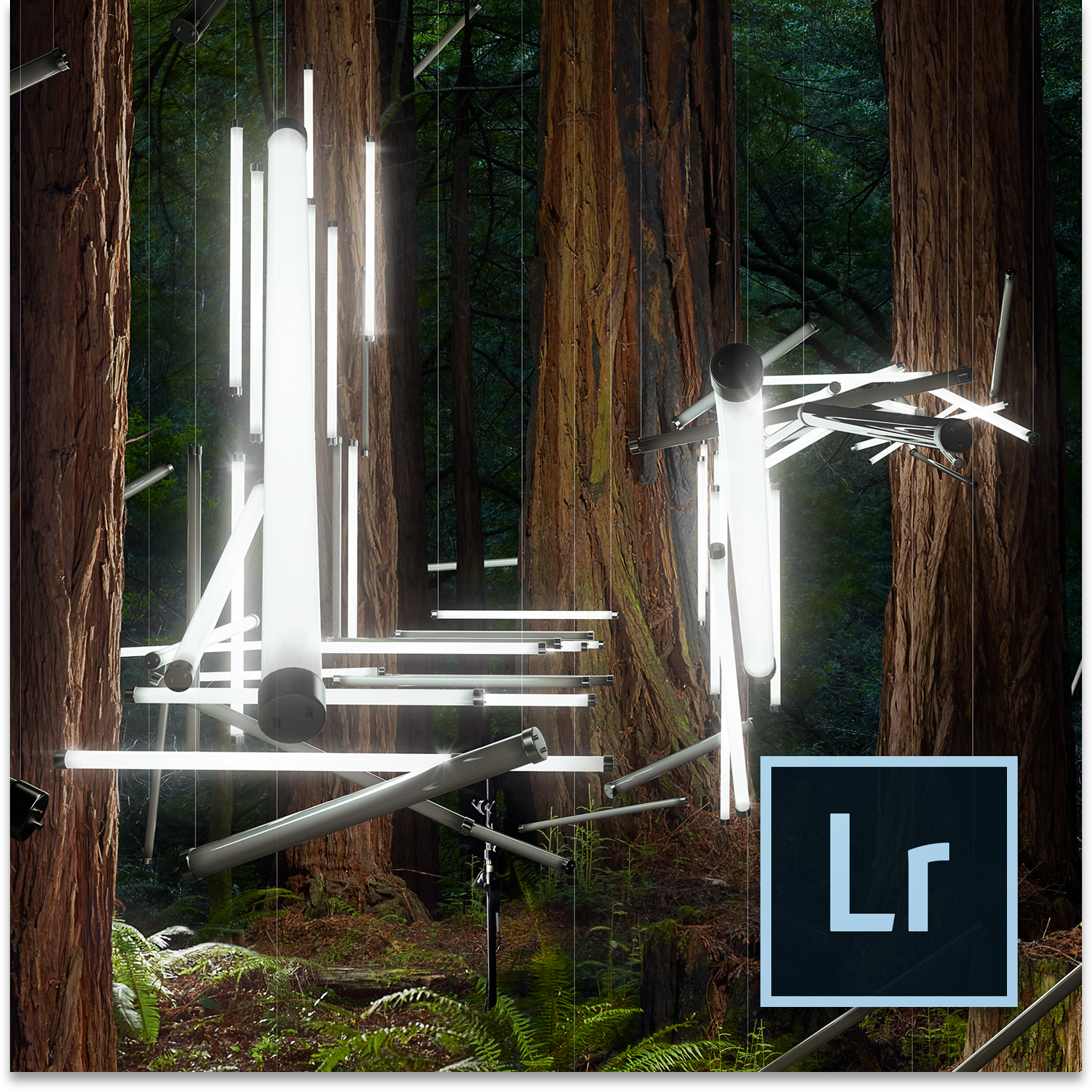 Adobe launches Lightroom 5 with exciting new options