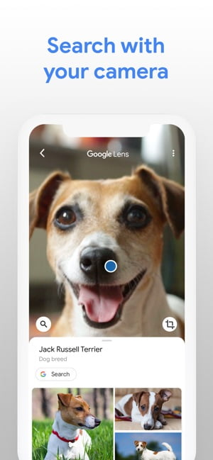 Google Lens begins to reach the iPhone and iPad