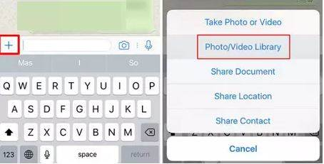 How to Create and Send GIFs on WhatsApp on an iPhone