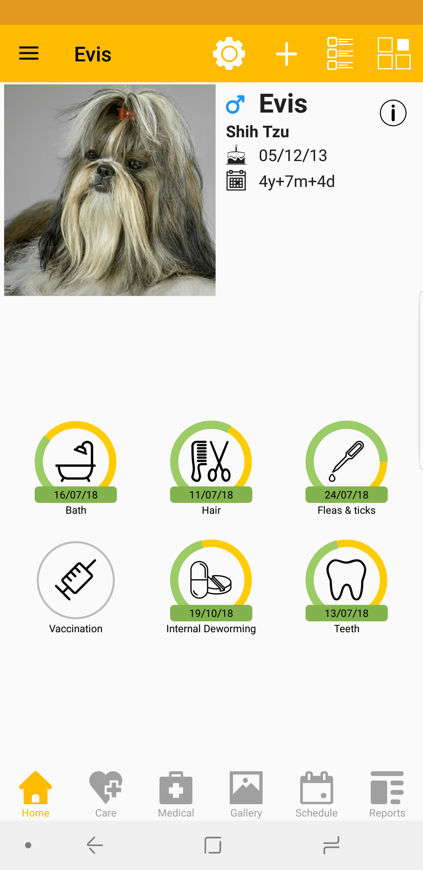 Keep your pet's information up to date with Pet Diary