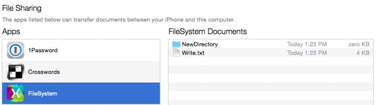 This is what an iOS file system would look like