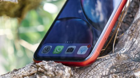 Two Different Sources Confirm the Curved Design of the iPhone Low Cost
