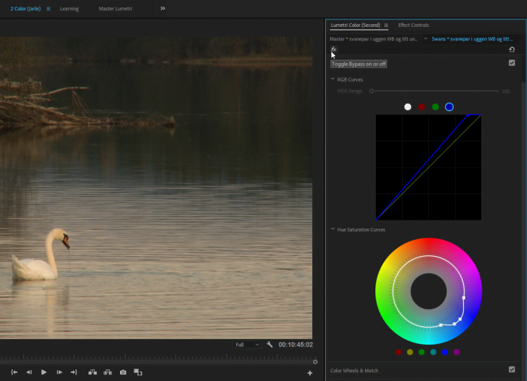 The new Final Cut Pro will be launched this spring and will make a huge difference